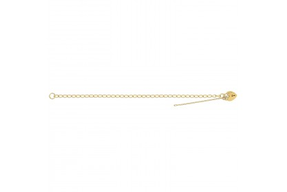 9ct Yellow Gold Ladies Classic Charm Bracelet