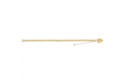 9ct Yellow Gold Ladies Classic Charm Bracelet