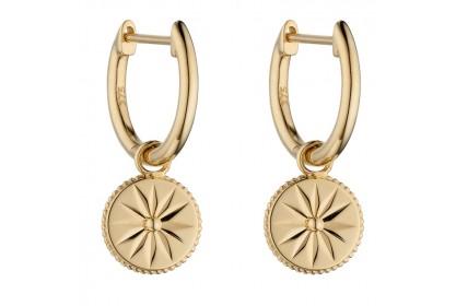 9ct Yellow Gold Wellness Assembled Earrings